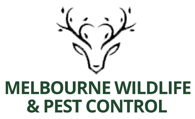 black-pestcontrol-logo